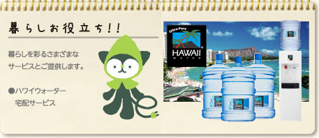 ecotto hawaii water 湘南